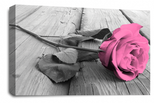 Rose Flower Canvas Wall Art Pink Grey White Floral Picture Print